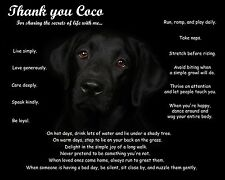 Black Lab Wall Art Print-Unique Dog Lovers Gift Idea-Personalized w/Pet's Name