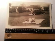 Vintage African American photo of baby laying in the grass