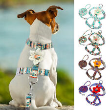 Small Medium Dog Nylon Strap Harness and Lead Pet Dog Flower Walking Vest Leash