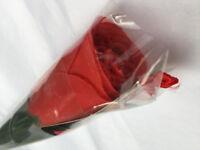 RED Novelty Panty Love Rose Birthday Valentine's Mother's Day Gift 17 inch stem
