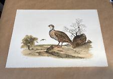 Vintage Audubon Lithograph JEROME TROLLIET 1973 Hand Signed LE Art Print Birds