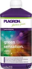 Plagron GREEN SENSATION ATTIVATORE Top Bloom STIM 250 ML