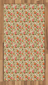 Peach Color Area Rug Flat Woven Accent Rug Home Decoration 2 Sizes Ambesonne