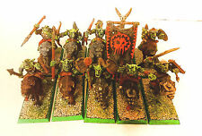 ** WARHAMMER ** GOBLIN WOLF RIDERS WEEL PRO PAINT/ CAVALCALUPO GOBLIN