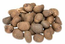 NaDeco® Tagua Nüsse 1kg unpoliert | Steinnuss | Elfenbein Nuss | Pflanzliches El