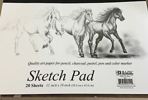 """JUMBO SKETCH PAD 20-12"""" X 18"""" HIGH QUALITY PAPER PENCIL CHARCOAL  And (2 )9x12"""