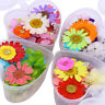 Colorful Preserved Dried Flower 3D Nail Art Decoration Heart-Shaped Manicure DIY