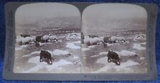 Palestine Mt. Neho across the Jordan to the Promised Land Underwood Stereoview