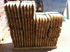 Treated Pine Timber Pegs 50x25 Garden Stakes 450mm QTY 50 PEG EDGING STAKE