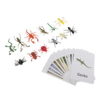 Montessori Animal Match Cards and Figurines - 12 Pieces Miniature Insect Model &