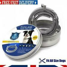 Flea and Tick Collar 8 Months Protection Adjustable Small Medium Pets No Box