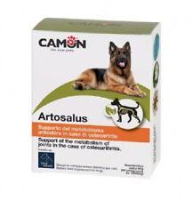 Artosalus Care 60 Comp 60 x 1000 MG 125923 Camon Monovarsalud