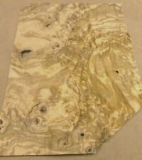 Olive Ash Burl Wood Veneer 10 X 13 Raw With No Backing 142 Thick Aa Grade