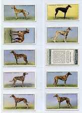 Full Set, Churchman, Racing Greyhounds 1934 VG-EX (Gy109-298)