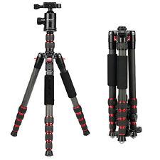 Professional Carbon Fiber Tripod monopod&BallHead for Canon Nikon DSLR Camera DV