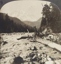 Keystone Stereoview Mt Rainier & Nisqually River, WA from 1910s Education Set #B
