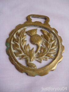 Solid Vintage Horse Brass - Scottish Thistle  Design