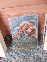 Lodernde Leidenschaft, ein Roman von Johanna Lindsey