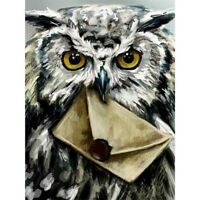 5D Diamond Painting Embroidery Cross Craft Stitch Mural Owl Envelope Bird