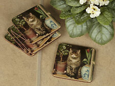 Set of 6 BASKING CAT Premium Cork-Backed COASTERS