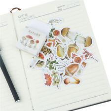 46 Teile / schachtel Wald Geschichte Papier Label Aufkleber DIY Scrapbooking STD