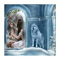 5D DIY Full Drill Diamond Painting Wolf Women Cross Stitch Embroidery Kit AU