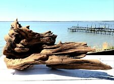 Cedar Driftwood - Naturally Aged & Wave Smoothed  Great for Yard/Garden Decor!