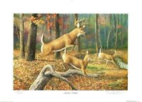 """Fleeting Moment"" Deer By Randy McGovern Signed & Numbered"