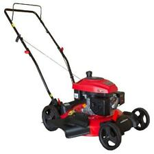 Gas Push Lawn Mower 2-in-1 170 cc Easy Pull Starting w/ 21 in. Steel Mowing Deck