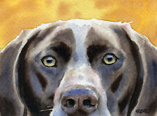German Short Haired Pointer Watercolor 8 x 10 Art Print Signed by Artist Djr