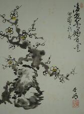 Japanisches Rollbild Kakejiku Kakemono Pflaumenbaum Japan Scroll 3724