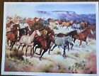 HORSE STAMPEDE, Jack Sorenson, Art print 12 X 16, new print, western scene