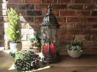 French Antique Vintage Pillar Candle Holder Hurricane Lantern Extra Large 61cm