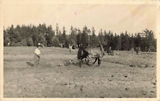 R197686 Horse. People. Labour. Working. Old Photography. Postcard. VEF