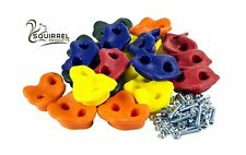 20 Deluxe Extra Large Assorted Rock Climbing Holds with Installation Hardware.