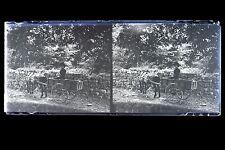 Promenade en Carriole Mode 1900 Grande plaque stéréo NÉGATIVE