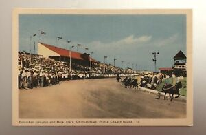 Horse Harness Racing Postcard Prince Edward Island Canada, Exhibition Building