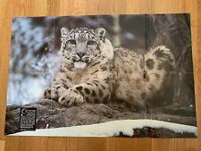 Vintage National Geographic World Magazine 1987 Snow Leopard Poster