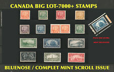 CANADA STAMPS BIG LOT - BLUENOSE / MINT SCROLL ISSUE +1 EXTRA MINT BLUENOSE