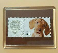 Hungarian Vizsla, Post stamps in Fridge magnet frame Dog Hungarian domestic mail
