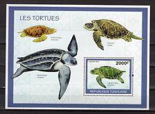 TOGO - 2010 Fauna - Turtles  M2716