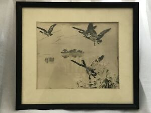 Frank W. Benson Etching 'Mallards' No.2 Plate VIII from a proof in BritishMuseum