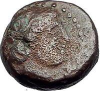 ANTIOCHOS III the GREAT - Rare R1 Ancient Greek SELEUKID Coin ELEPHANT i63174