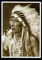 Crow Nation Choose from 6 Sizes! Apsaroka Indian New Photo: Young Hairy Wolf