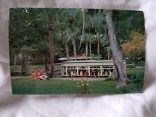 Florida's Silver Springs Vintage