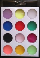 12 Mixed Colors Acrylic Nail Art Tips UV Gel Powder Dust 3D DIY Decor Set Shiny