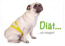 """A6 Postkarte Grußkarte Karte lustiger Hund Mops mit Maßband """"Diät ab morgen!"""""""