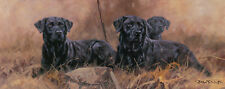 LABRADOR RETRIEVER BLACK GUN DOG FINE ART LIMITED EDITION PRINT by John Trickett
