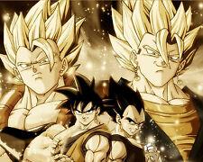 Dragon Ball Z Poster Anime Japanese Goku Vegita Wall Art Home Decor 16x20 inches