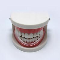 Zahnschleifen + Aufbewahrungskoffer Dental Mouth Guard Bruxismus Splint NiTPI